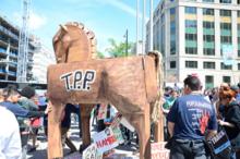 TPP Trojan Horse